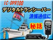 icdpr100-top.jpg