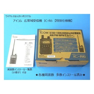 IC-R6main